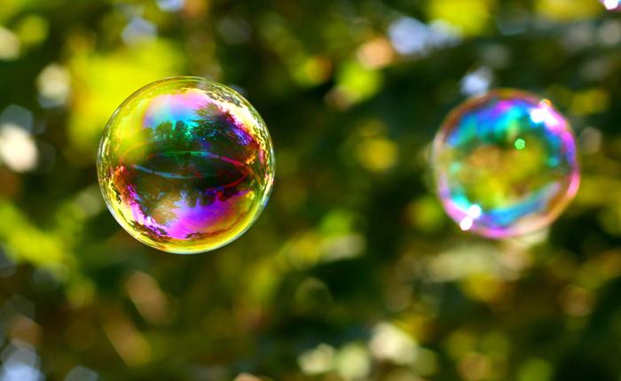 As novas zonas de confortos instrumentalizadas ou as bolhas sociais