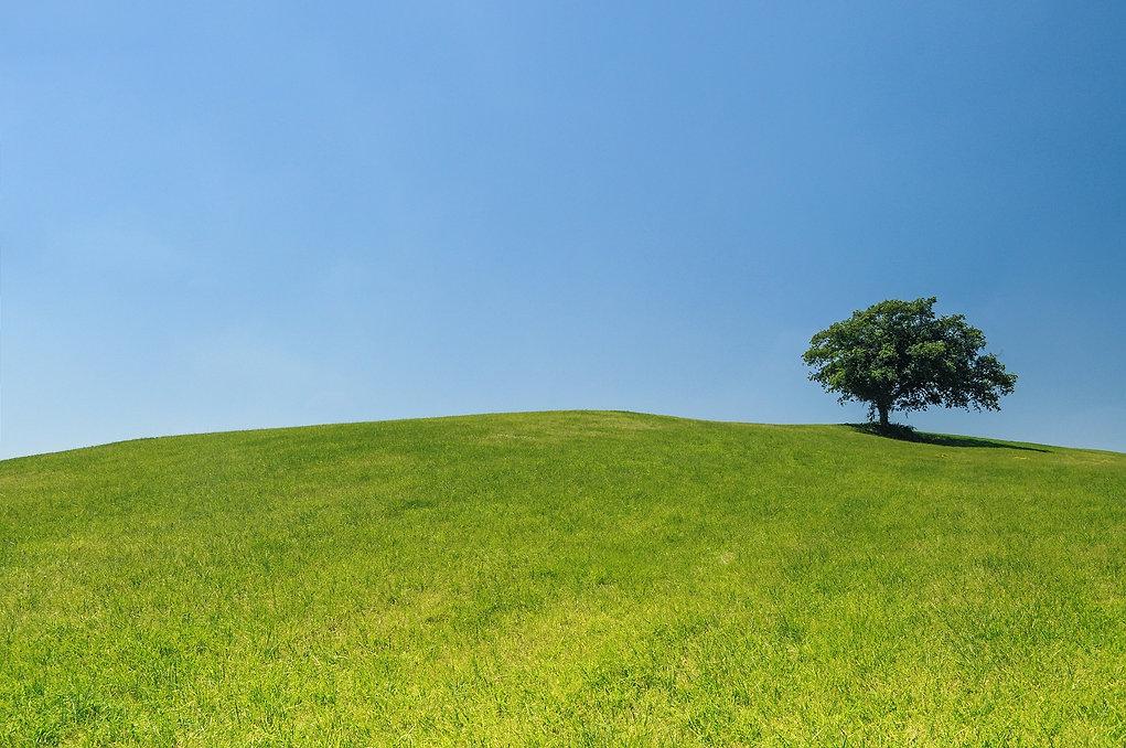 green hills 2.jpg