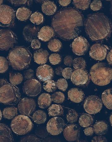 Remoción de árboles