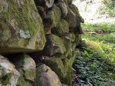 Bakoni ruins