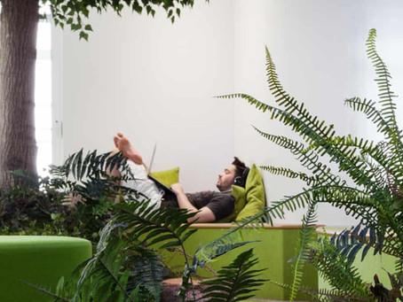 Bio work spaces