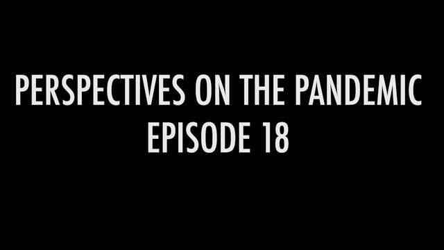 PERSPECTIVES ON THE PANDEMIC XVIII