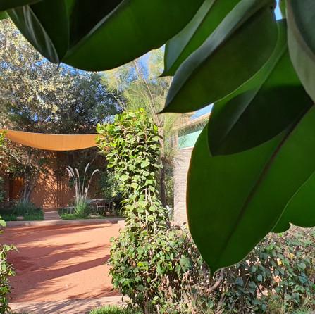 Pétanque Court Dar Gonzo Garden