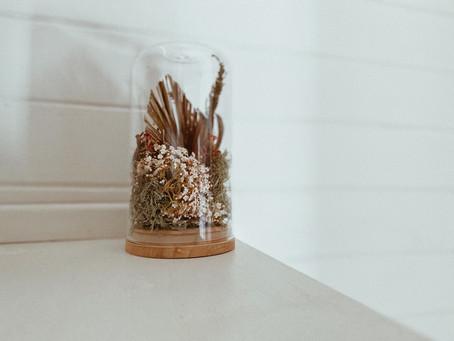 Flower Dome DIY