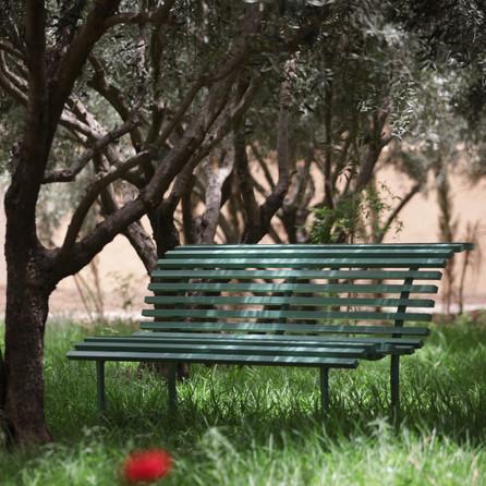 Relax Dar Gonzo Garden
