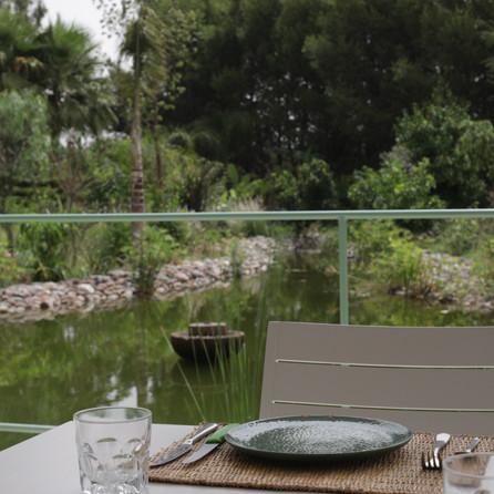 Pond Dar Gonzo Garden