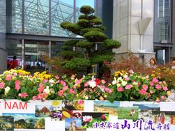 Lễ kỷ niệm 45 năm thành lập Quảng trường Tòa thị chính Sakai Nhật - Việt, tỉnh Osaka Hoa trang trí sân khấu