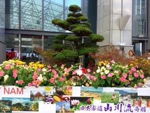 日越樹立45周年記念大阪府堺市市役所広場 舞台装飾花