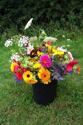 Local Bloom Bucket