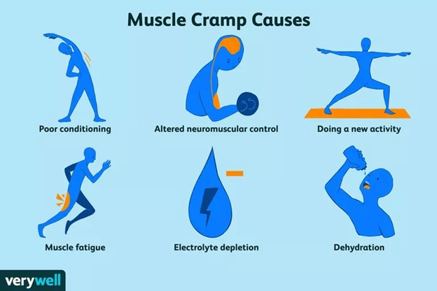 causes of muscle cramps to include: poor conditioning, altered neuromuscular control, new activity, muscle fatigue, electrolyte depletion
