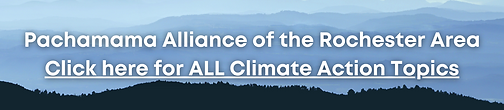Climate Action Topics.png
