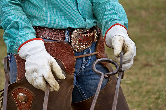 Rhinestone Cowgirl.jpg
