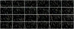 《绘画—雨》木板丙烯 +动画(38x64cm)x24. 2018年