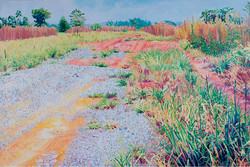 碎石与杂草 布面油画 100x150cm 2012
