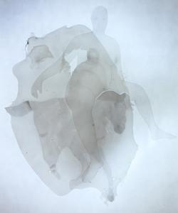 罗苇《透明》系列 综合材料 50x30cm 2012