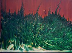 崖柏 Cliff Cypress 200x150cm 布面油画 2020