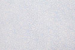 2. 尘201501 布面彩色铅笔 200x280cm 2015 局部1