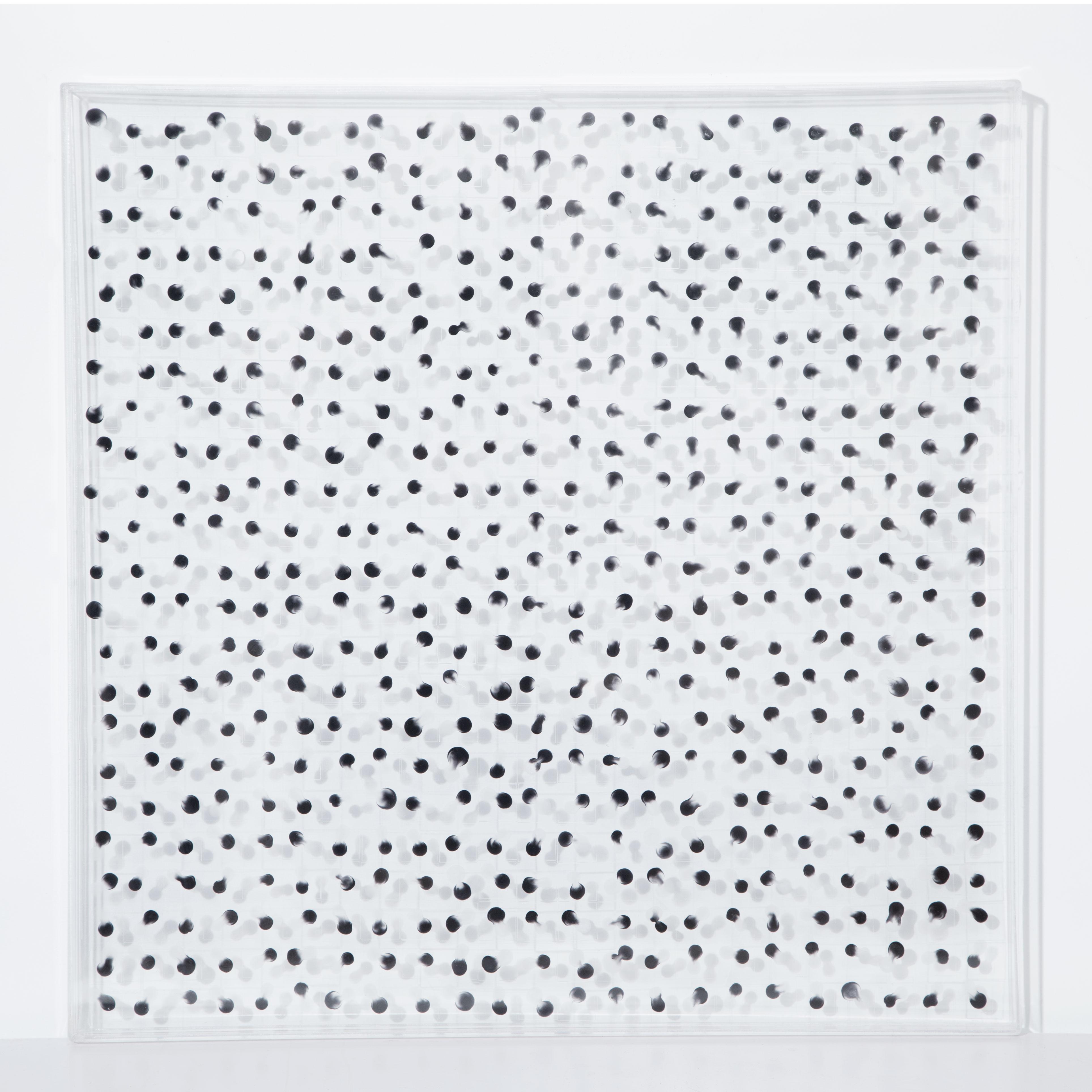 隐性共生   Invisible Symbiosis    60x60cm 综合