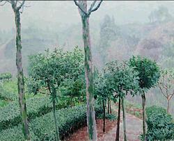 丘陵 布面油画 80x100 2011