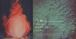 张博夫个展 — 飞慢 Zhang Bofu Solo Exhibition — The Fled & the Measured
