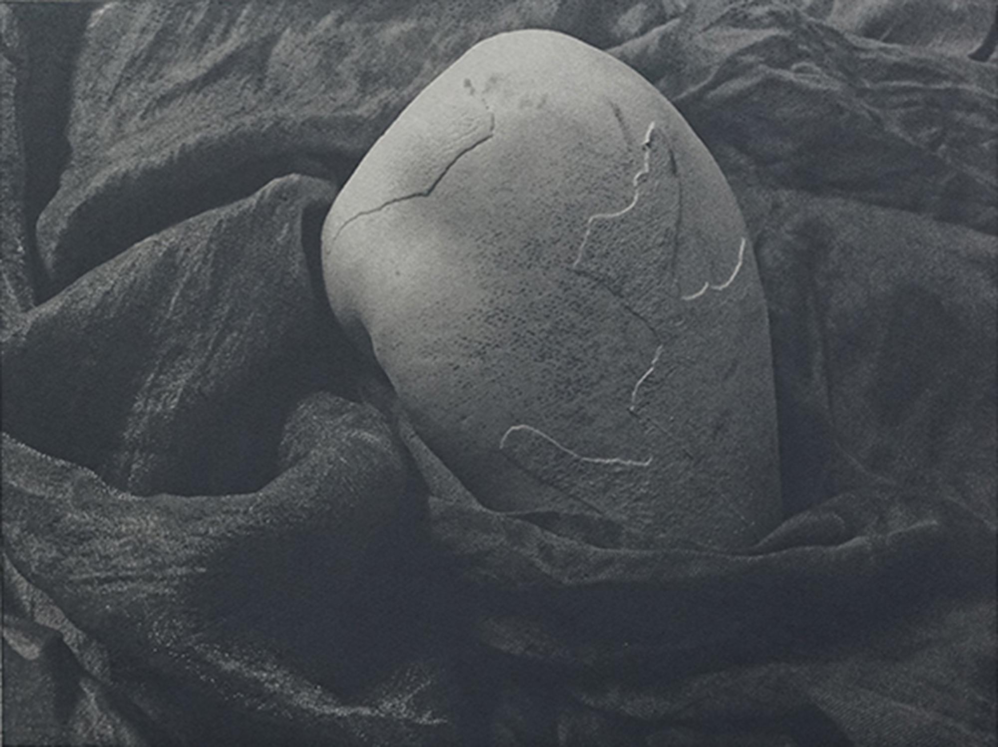 脱落Spallation-41x31cm-铜板照相制版+photoetching