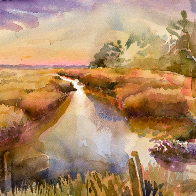 morning marsh.jpg
