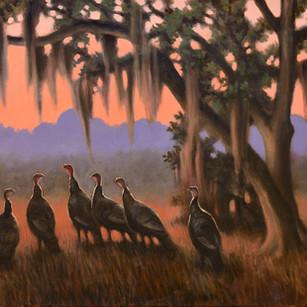 turkeys at dawn.jpg
