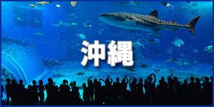 沖縄300-150.jpg