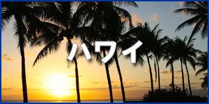 ハワイ300-150.jpg