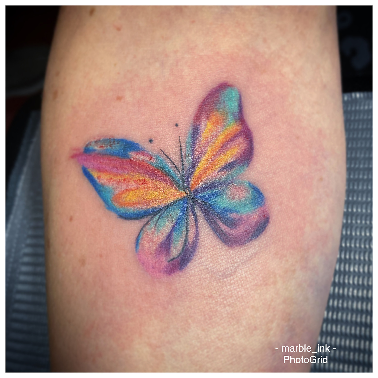 Watercolor Butterfly.jpg