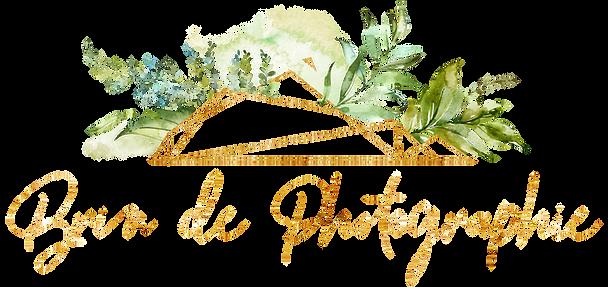 Logo Brin de Photographie
