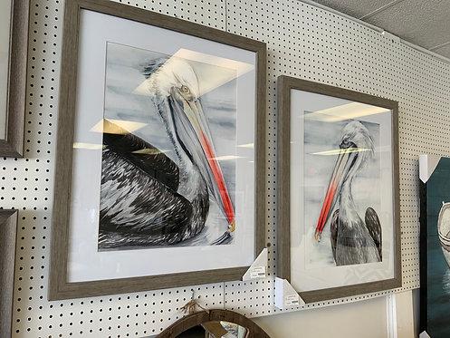 Gray Pelican Artwork