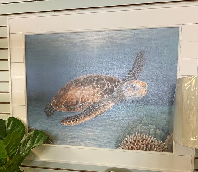 Shiplap turtle