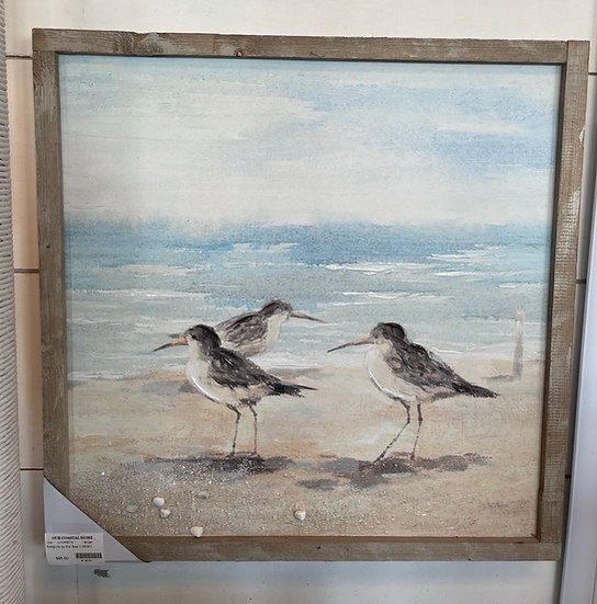 Seagulls by the sea ll
