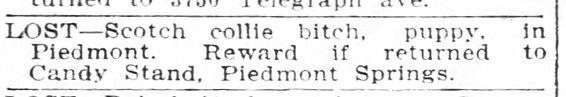 Oakland_Tribune_Tue__Oct_13__1908_.jpeg