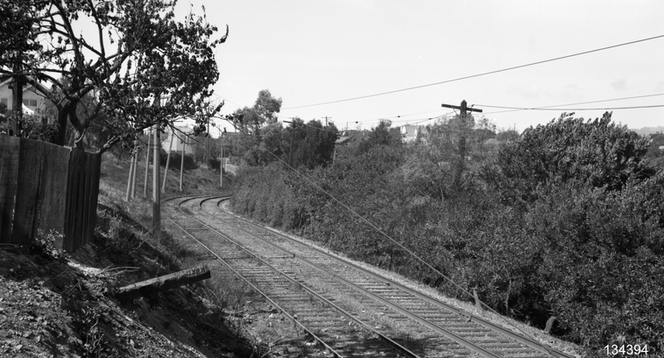 Key - 11 line tracks empty down the dog path today - 134394ks.tif