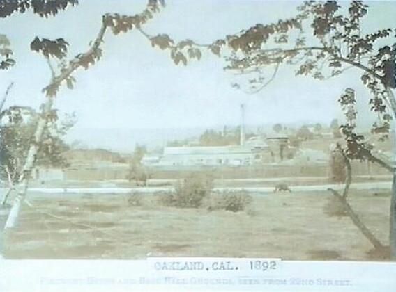 Picture - Piedmont baths 1892.jpg