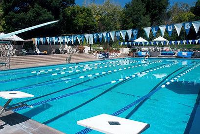 piedmont swim club.jpeg