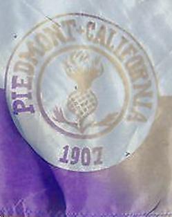 Copy of 1907 Piedmont Flag.webp