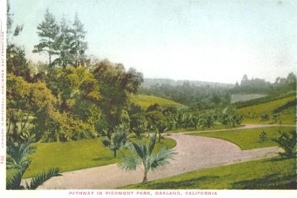 Postcard - Piedmont Park - Palm pathway.