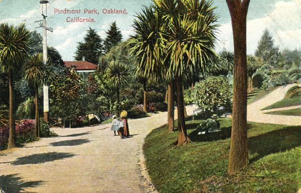 Postcard - Piedmont Park- Palm Pathway3.