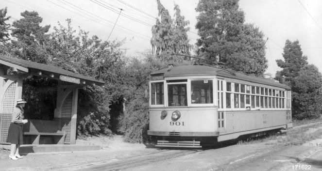 Piedmont - 10 train - Dracena park - 171622ks.jpg