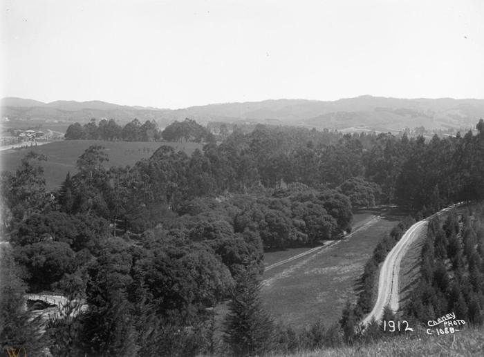 1912 PIEDMONT HILLS FROM TRESTLE GLEN.jp