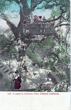 Postcard - Piedmont Park - Grotto Sign -