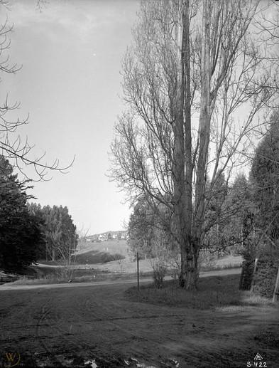 1912 wildwood avenue 2.jpg