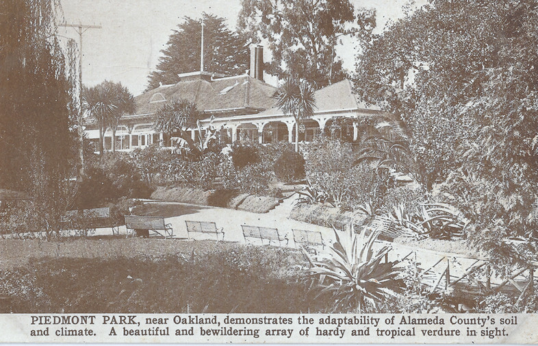 Piedmont park and cafe postcard.jpg