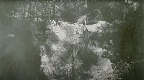 mineral springs_edited.jpg
