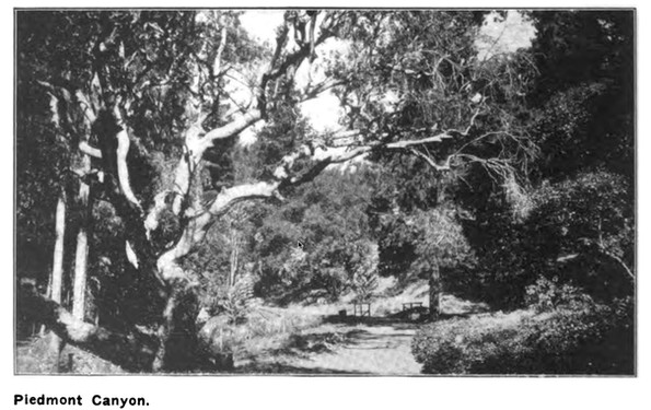 Piedmont Park - Canyon - overland monthl