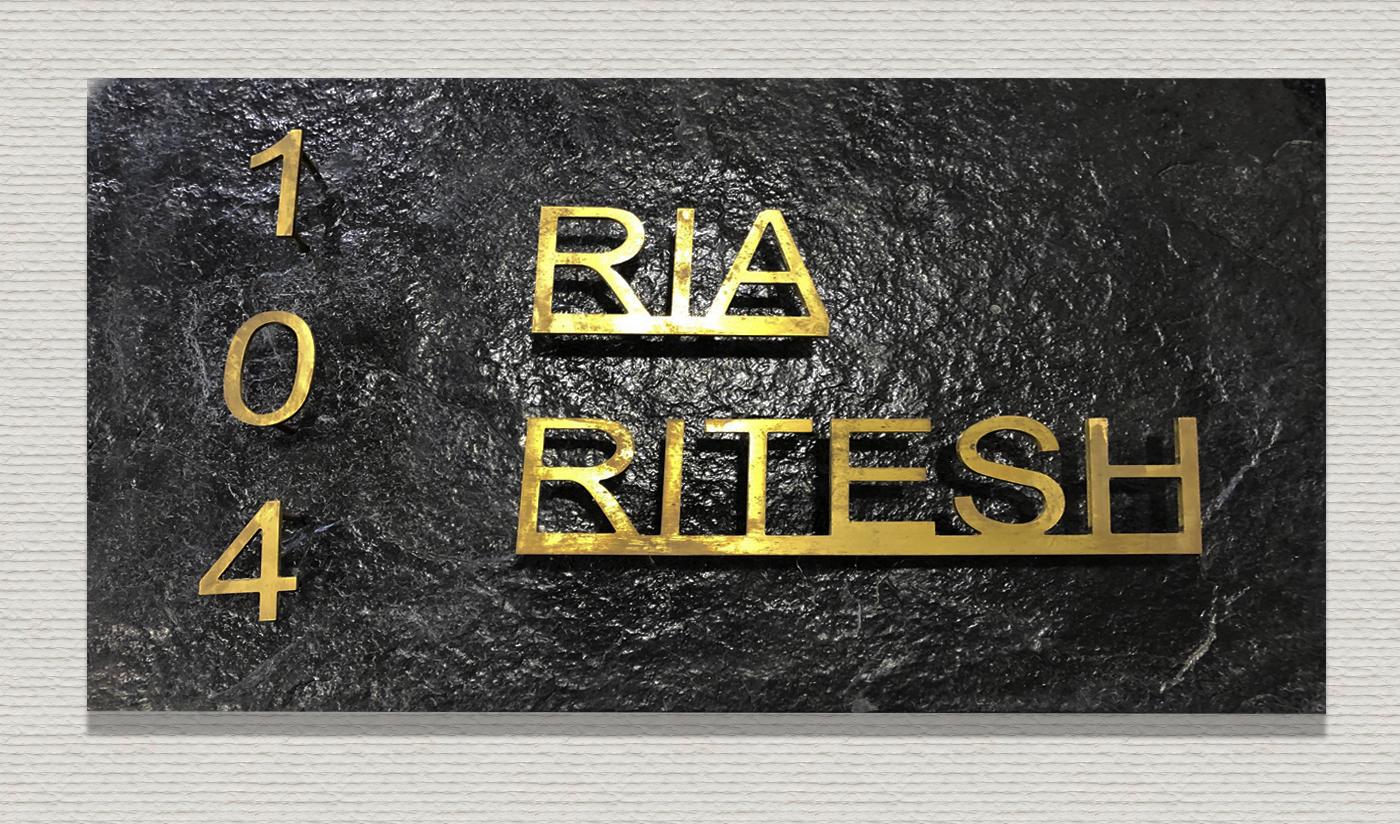 Ria Ritesh copy1