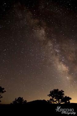 Yosemite Milky Way wix.jpg